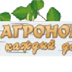 Solomon аватар