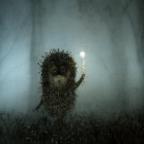 The Hedgehog аватар